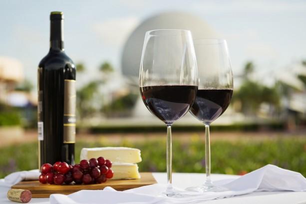 20th Epcot International Food & WineFestival!