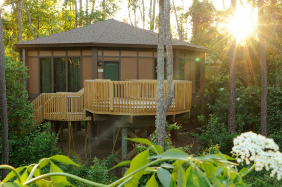 Saratoga Springs Disney-Treehouse-Villa