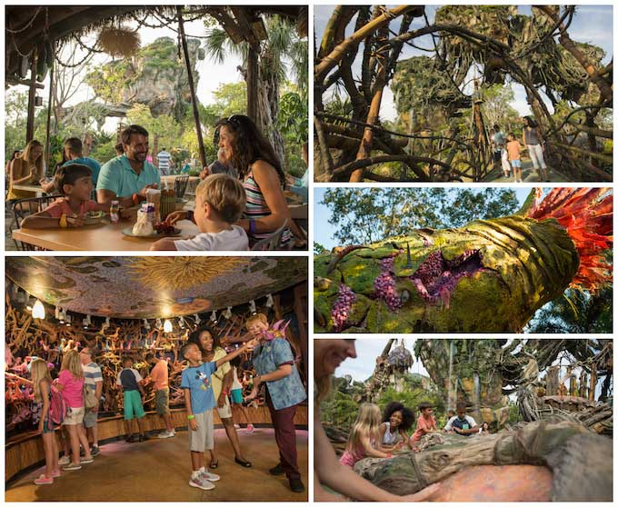 7 Things to Experience in PANDORA – The World of Avatar!